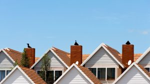 A row of rooftops